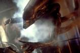 Alien5