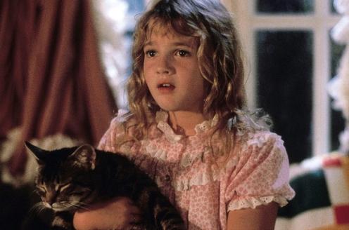 17.Cat'sEye